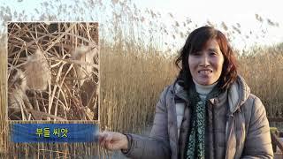 안산갈대습지공원 겨울 생태체험 [전선영 기자]