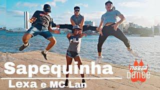 Video Sapequinha - lexa e MC Lan - Tigger Dance #lexa #mclan #sapequinha download MP3, 3GP, MP4, WEBM, AVI, FLV September 2018