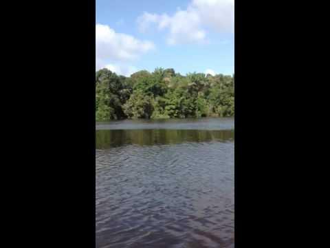 beautiful Guyana
