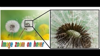 How to create image zoom effect like Flipkart with html , css & js Mp3