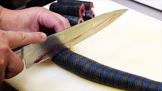 Japanese Street Food - VENOMOUS SEA SNAKE Okinawa Seafood Japan thumbnail