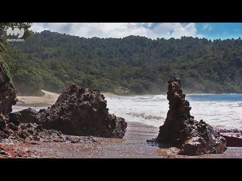 New Chums Beach , Coromandel