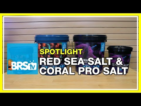 Your saltwater tank on Red Sea Salt and Coral Pro Salt