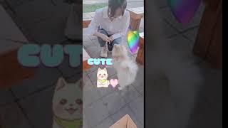 200601 러블리즈 케이 인스타 스토리 lovelyz kei instagram story 콩구리