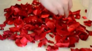"""Свадьба в цвете """"марсала""""   Wedding in color of Marsala"""