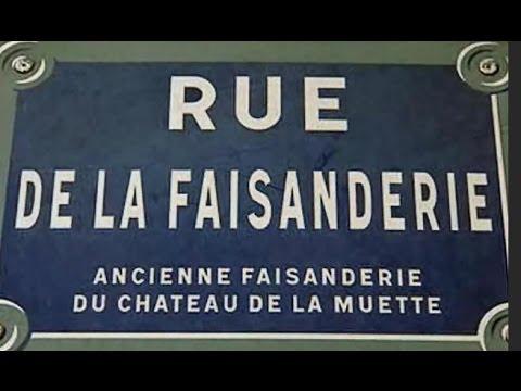 Rue de la Faisanderie Paris Arrondissement  16e