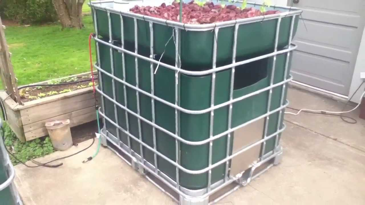 Ibc Tote Aquaponic System Quot Full Cage Quot 2013 Youtube