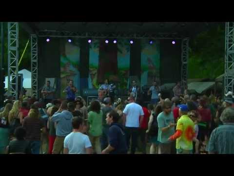 The Brothers Comatose Performs at Summer Arts & Music Festival 2015