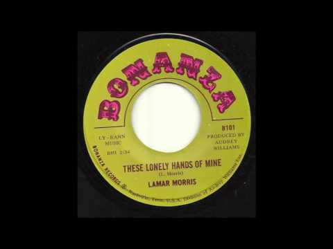 Lamar Morris - These Lonely Hands Of Mine