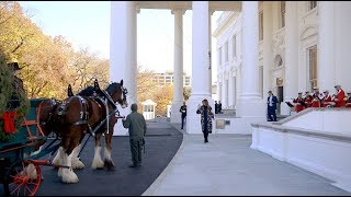 Download First Lady Melania Trump Receives the 2019 White House Christmas Tree Mp3 and Videos