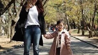 2019년 4월 3일 1박2일 경주 벚꽃여행