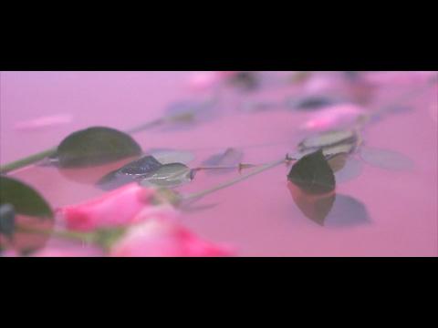 Violet Days - Suck At Love