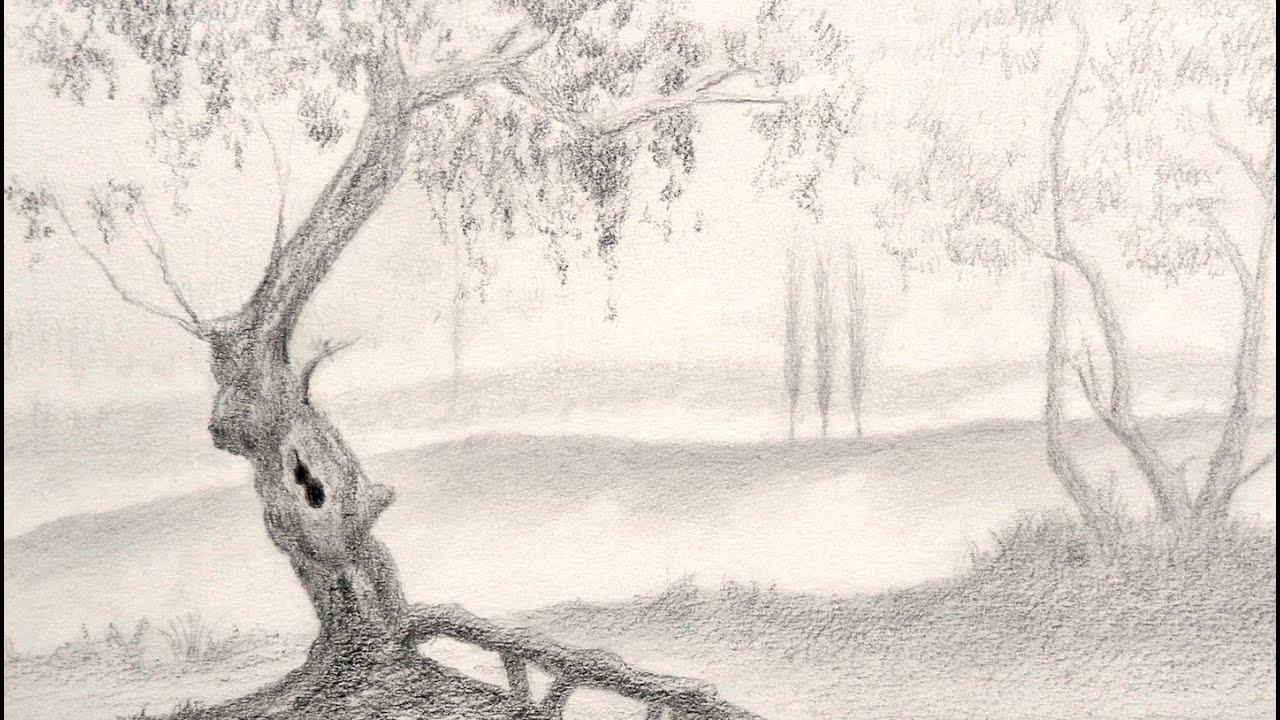 Dibujando Paisajes Como Dibujar Un Arbol Arte Divierte Youtube