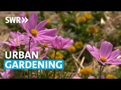 Gartenparadies mitten in der Stadt | SWR Treffpunkt