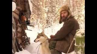 Собаки из станция Бахта Красноярский край