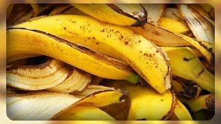 банановая подкормка, супер удобрение