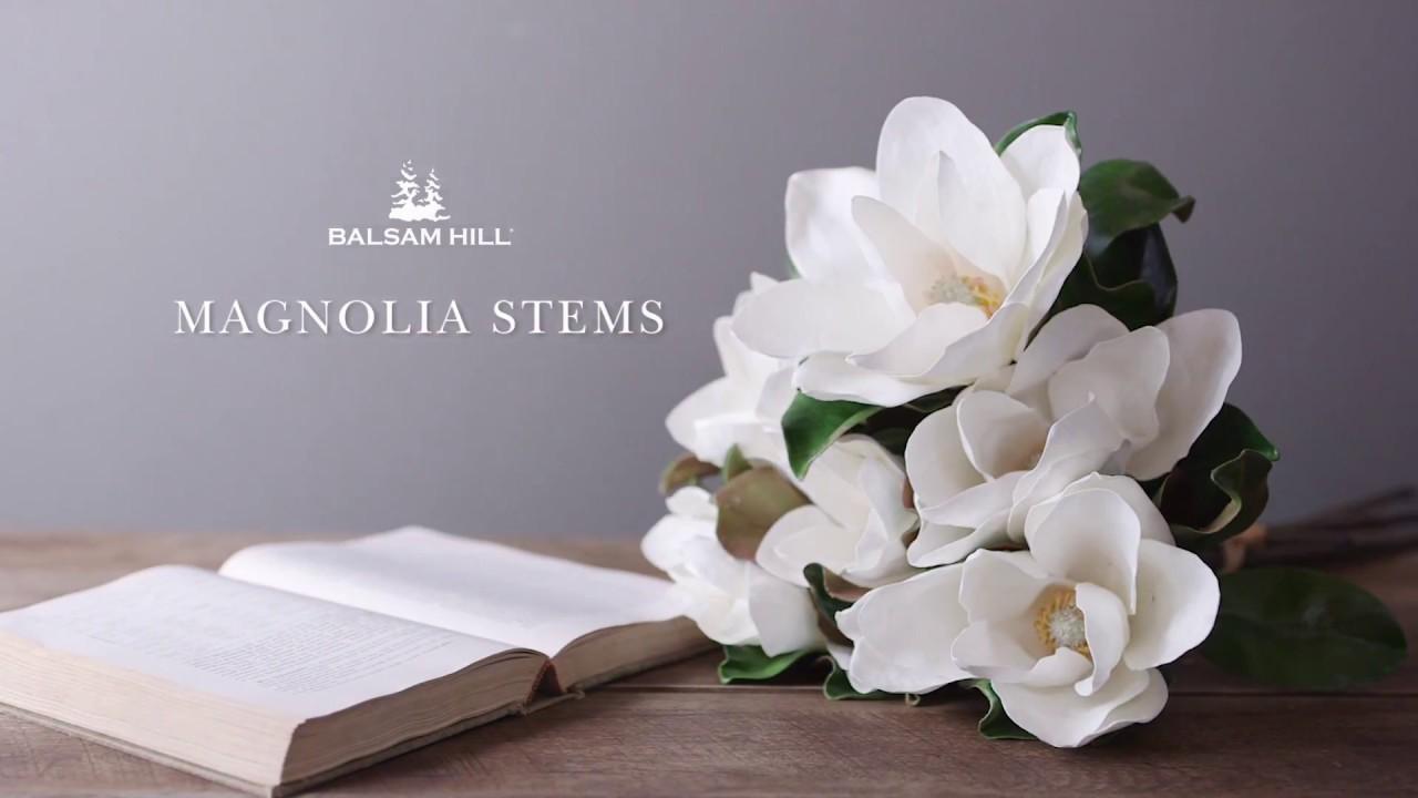 White Magnolia Flower Stems From Balsam Hill Youtube