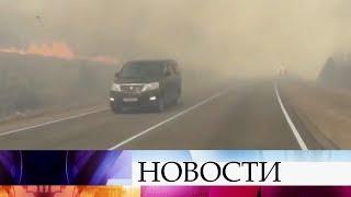 На Дальнем Востоке увеличивается площадь лесных пожаров.