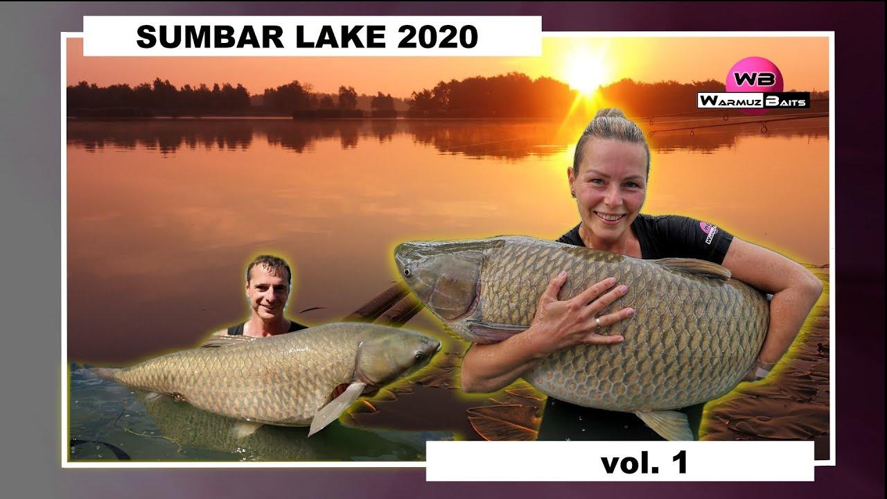 Sumbar Lake 2020 vol.1
