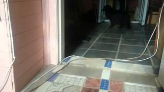 Когда хозяйки нет дома(, 2015-05-21T08:15:35.000Z)