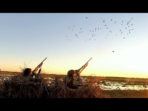 Opening Day Goose Hunt in Arkansas