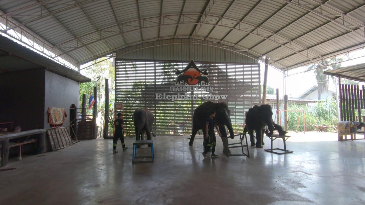 Download Elephant Show, Damnoen Saduak Floating Market, southwest of Bangkok, Thailand (Part 2)