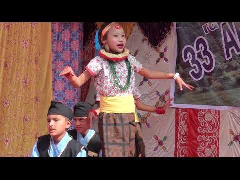 nepal police school dang junior student dance (33 th universal day 2074)