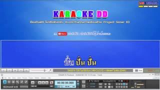 T26 โบกโบ๊กโบก มิสเตอร์ ไบรอัน คาราโอเกะ remix karaoke