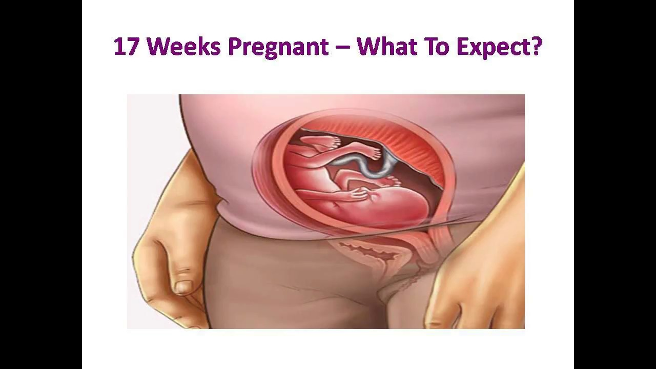 17 Weeks Pregnant What To Expect Youtube