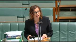 Parliament - 2 February 2017 - Digital Readiness and Other Measures Bill
