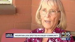 Mountain lion spotted by several in Queen Valley
