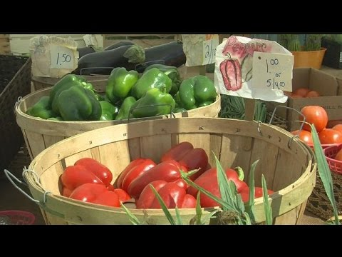 With over 200 farmer's markets in Fla., food safety becomes a concern
