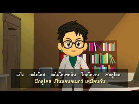 วิชาเคมี - สารชีวโมเลกุล