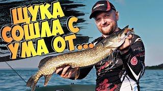Хитрости ловли щуки и судака на ДЖИГ! Рыбалка на спиннинг летом в жару 2019!