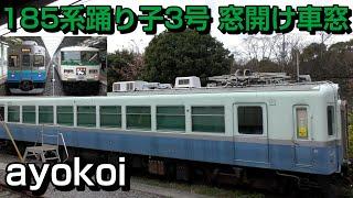 185系特急踊り子3号 最終日 窓開け山側車窓 東京-伊豆急下田