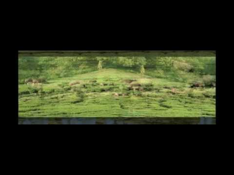 MEGAMALAI (HIDDEN PARADISE) TRAVEL HD VIDEO 7-5-2011