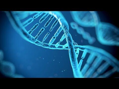 [HD] Gene ohne Grenzen - China erobert die DNA-Forschung (Doku)