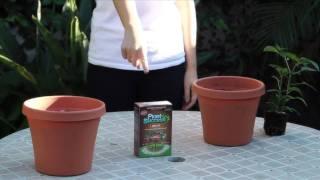 Plant Success Tablets Tutorial