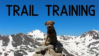 Training Your Dog For The Trail: Commands They Should Know for Hiking, Backpacking, and ThruHiking