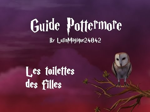 Guide Pottermore // Les toilettes des...