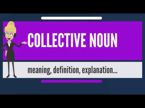What is COLLECTIVE NOUN? What does COLLECTIVE NOUN mean? COLLECTIVE NOUN meaning & explanation