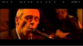 Hugh Laurie - Wild Honey (live)