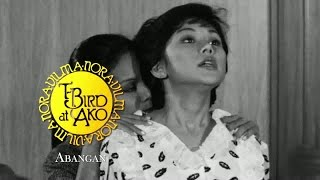 Video T-Bird at Ako Teaser: Vilma Santos download MP3, 3GP, MP4, WEBM, AVI, FLV November 2017