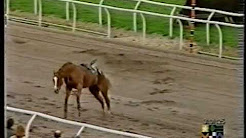 Scary Incident at Southwell Racecourse