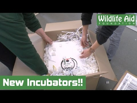 Unboxing our new incubators for orphan season!