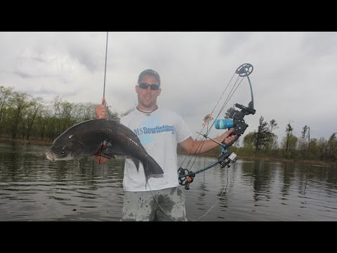 Bowfishing Giant Buffs Up Close