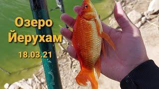 Рыбалка озеро Йерухам 18 03 21 Израиль