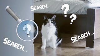 So what am I really looking for? True Catective. Series 2