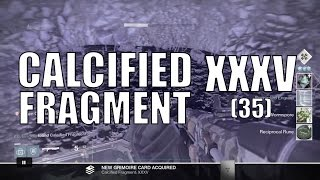 TTK New Item -   Calcified Fragment: XXXV - Taken Consumption Debuff Chest