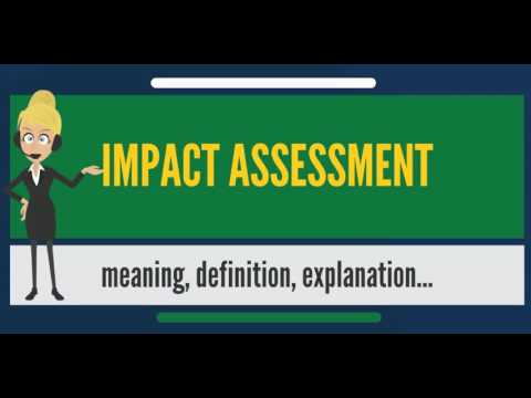 What is IMPACT ASSESSMENT? What does IMPACT ASSESSMENT mean? IMPACT ASSESSMENT meaning